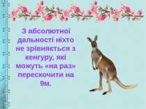 З абсолютної дальності ніхто не зрівняється з кенгуру, які можуть «на раз» пе...