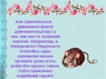Але трапляються дивовижні факти довгожительства і у тих, чиє життя зазвичай к...