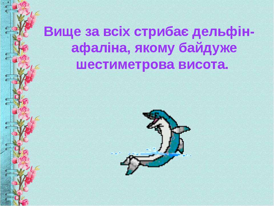 Вище за всіх стрибає дельфін-афаліна, якому байдуже шестиметрова висота.