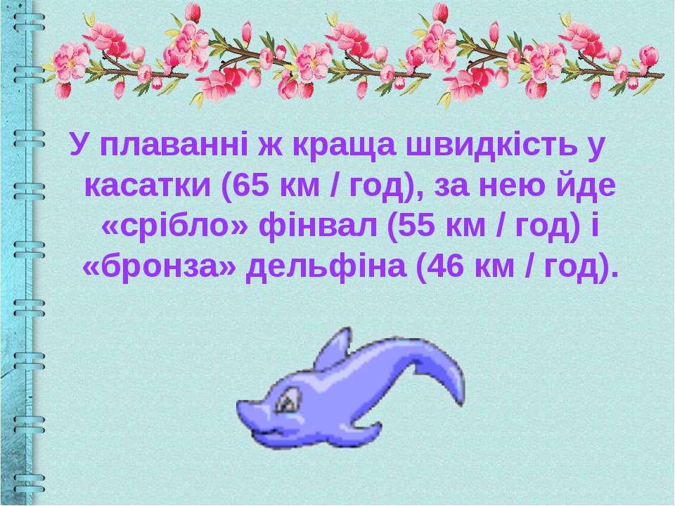 У плаванні ж краща швидкість у касатки (65 км / год), за нею йде «срібло» фін...