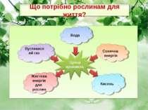 Вода Сонячна енергія Вуглекислий газ Кисень Життєва енергія для рослин