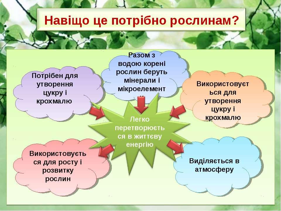 Разом з водою корені рослин беруть мінерали і мікроелементи Використовується ...