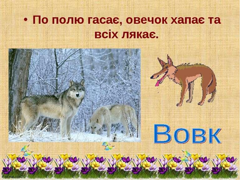По полю гасає, овечок хапає та всіх лякає.