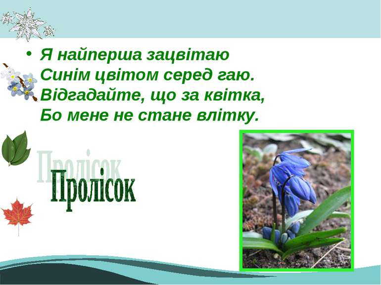 Я найперша зацвітаю Синім цвітом серед гаю. Відгадайте, що за квітка, Бо мене...