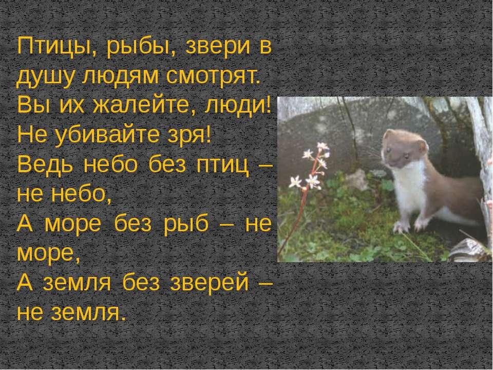 Птицы, рыбы, звери в душу людям смотрят. Вы их жалейте, люди! Не убивайте зря...