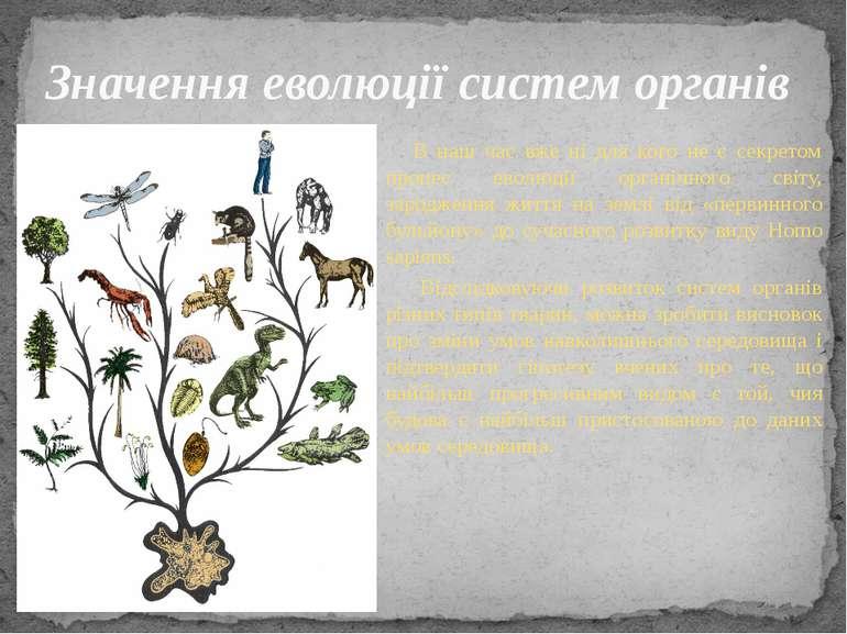 В наш час вже ні для кого не є секретом процес еволюції органічного світу, за...
