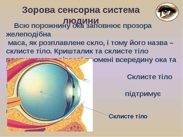 Всю порожнину ока заповнює прозора желеподібна маса, як розплавлене скло, і т...