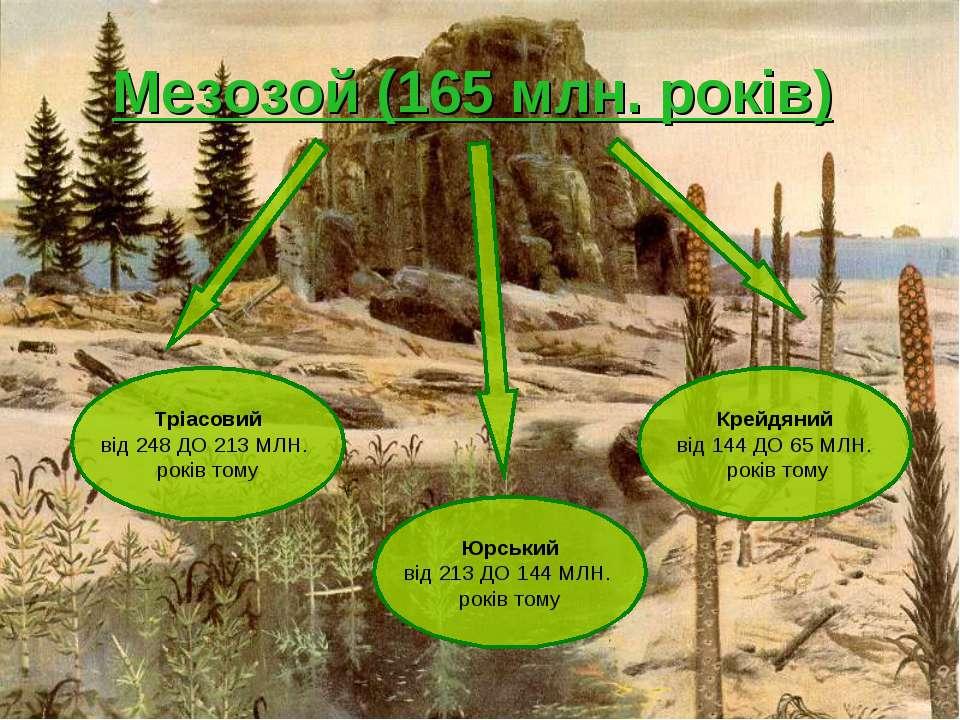 Мезозой (165 млн. років) Тріасовий від 248 ДО 213 МЛН. років тому Юрський від...