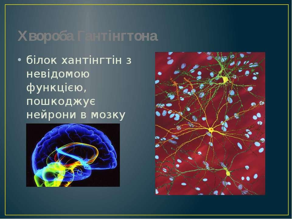 Хвороба Гантінгтона білок хантінгтін з невідомою функцією, пошкоджує нейрони ...
