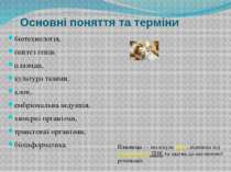 Основні поняття та терміни біотехнологія, синтез генів, плазмди, культура тка...
