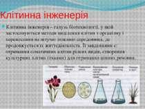 Клітинна інженерія Клітинна інженерія – галузь біотехнології, у якій застосов...