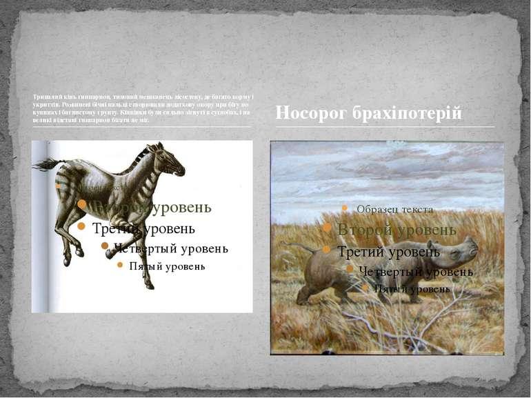 Трипалий кінь гиппарион, типовий мешканець лісостепу, де багато корму і укрит...