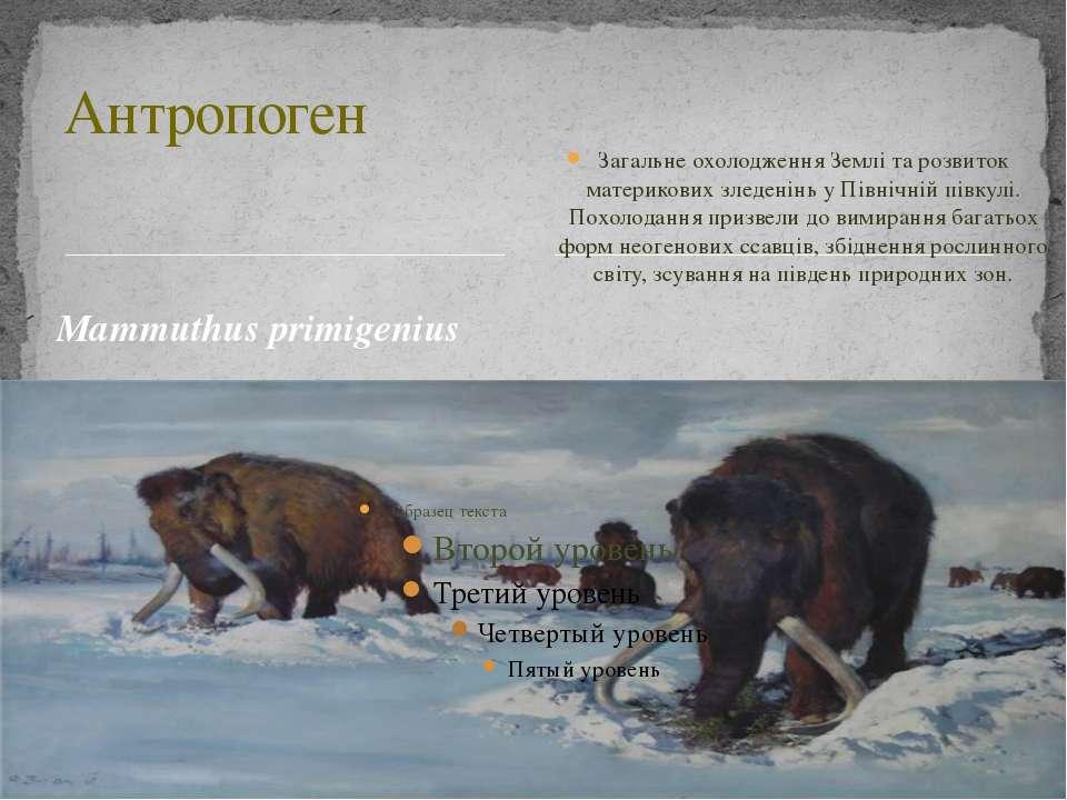 Маmmuthus primigenius Загальне охолодження Землі та розвиток материкових злед...
