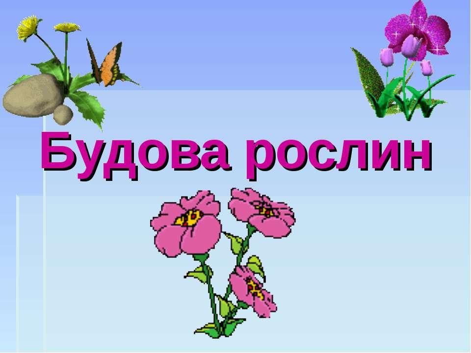 Будова рослин