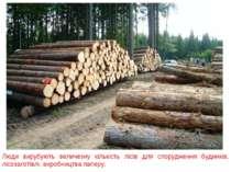 Люди вирубують величезну кількість лісів для спорудження будинків, лісозаготі...
