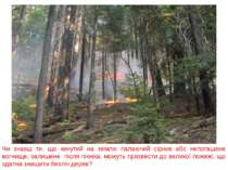 Чи знаєш ти, що кинутий на землю палаючий сірник або непогашене вогнище, зали...