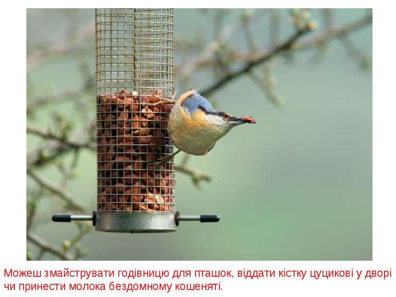 Можеш змайструвати годівницю для пташок, віддати кістку цуцикові у дворі чи п...