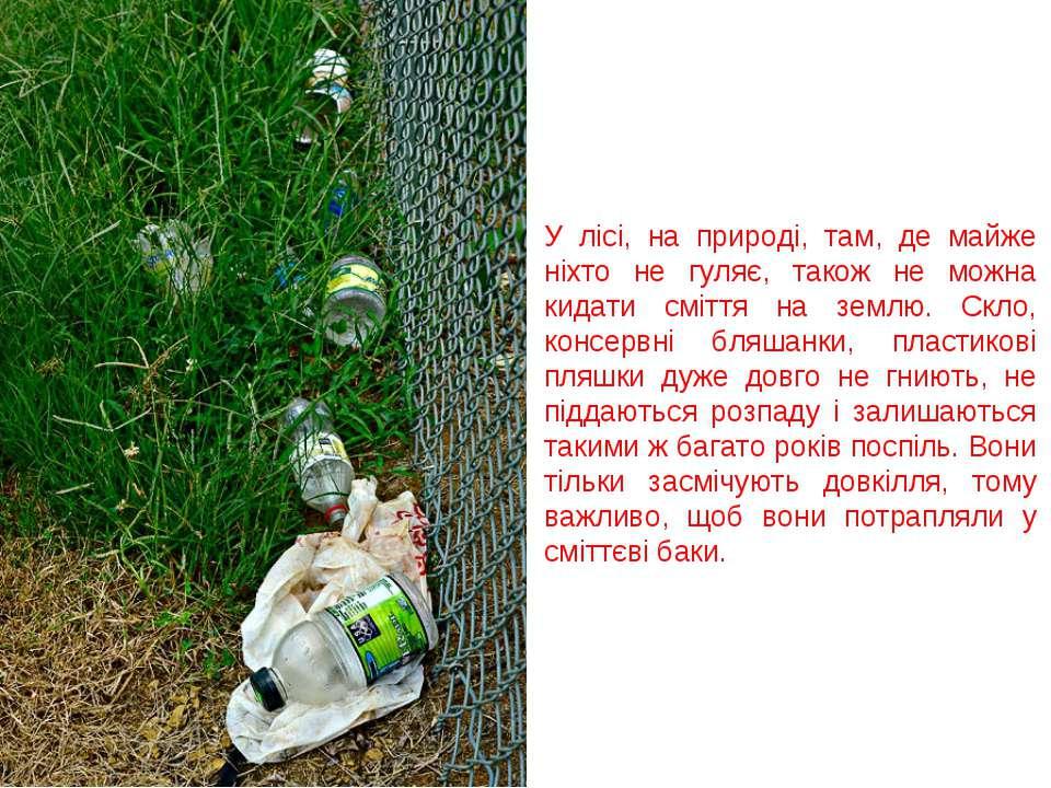 У лісі, на природі, там, де майже ніхто не гуляє, також не можна кидати смітт...