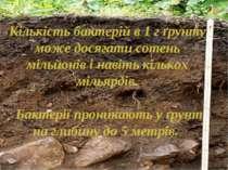Кількість бактерій в 1 г ґрунту може досягати сотень мільйонів і навіть кільк...