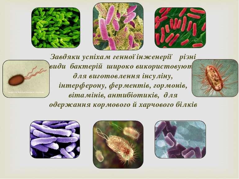 Завдяки успіхам генної інженерії різні види бактерій широко використовують дл...
