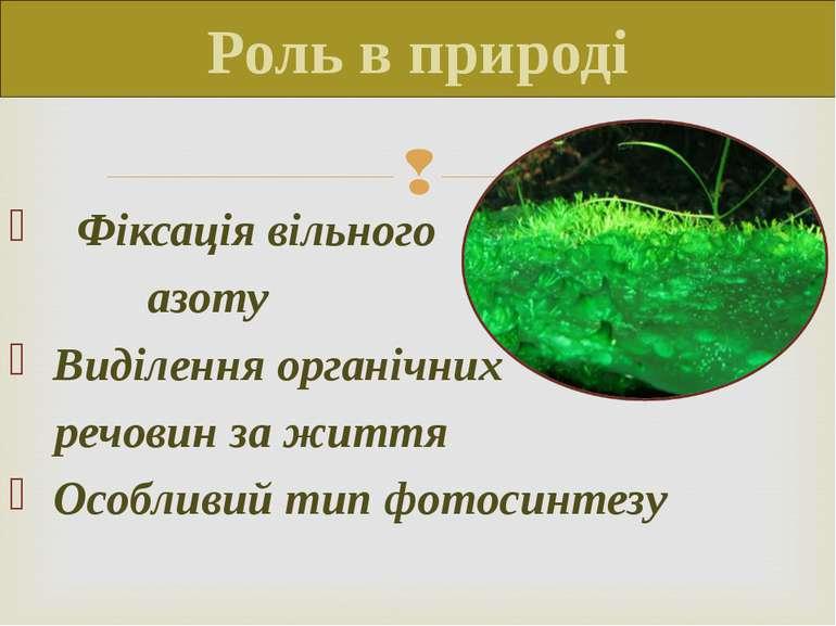 Роль в природі Фіксація вільного азоту Виділення органічних речовин за життя ...