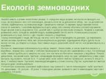 Екологія земноводних Амфібії живуть у різних екологічних умовах. Є серед них ...