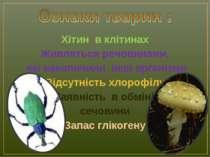 Хітин в клітинах Живляться речовинами, які накопичили інші організми Відсутні...