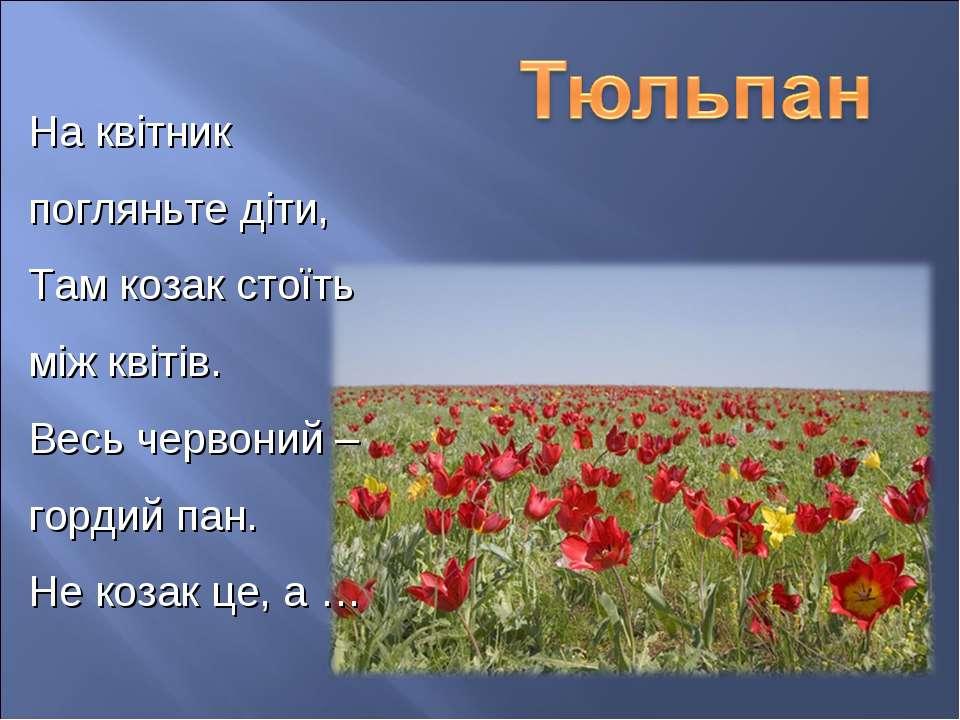 На квітник погляньте діти, Там козак стоїть між квітів. Весь червоний – горди...