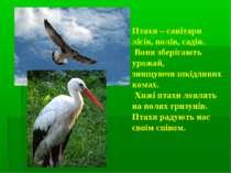 Птахи – санітари лісів, полів, садів. Вони зберігають урожай, знищуючи шкідли...