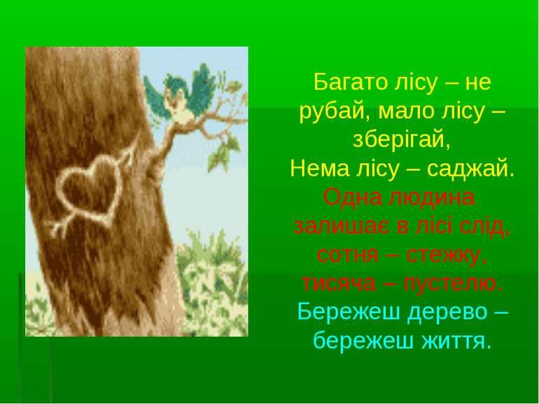 Багато лісу – не рубай, мало лісу – зберігай, Нема лісу – саджай. Одна людина...