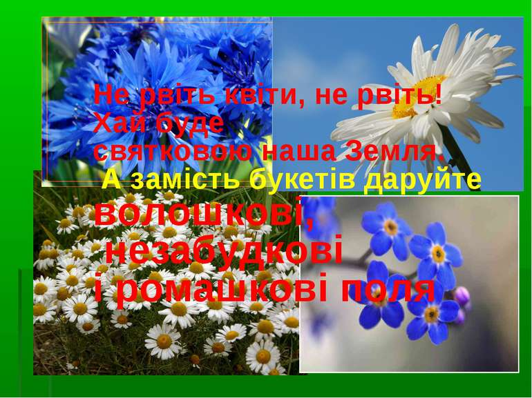 Не рвіть квіти, не рвіть! Хай буде святковою наша Земля. А замість букетів да...