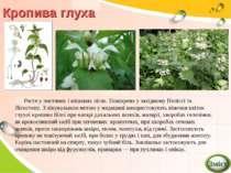 Росте у листяних і мішаних лісах. Поширена у західному Поліссі та Лісостепу. ...