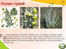Полин гіркий Полин гіркий росте в мішаних і листяних лісах, на галявинах, вир...