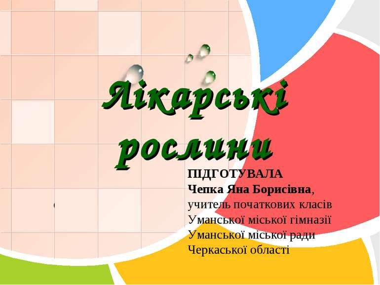 Лікарські рослини ПІДГОТУВАЛА Чепка Яна Борисівна, учитель початкових класів ...