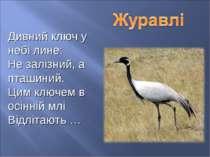 Дивний ключ у небі лине: Не залізний, а пташиний. Цим ключем в осінній млі Ві...
