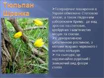 Географічне поширення в Україні обмежене Степовою зоною, а також південним уз...