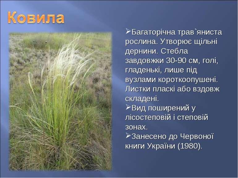 Багаторічна трав`яниста рослина. Утворює щільні дернини. Стебла завдовжки 30-...