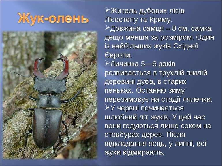 Житель дубових лісів Лісостепу та Криму. Довжина самця – 8 см, самка дещо мен...