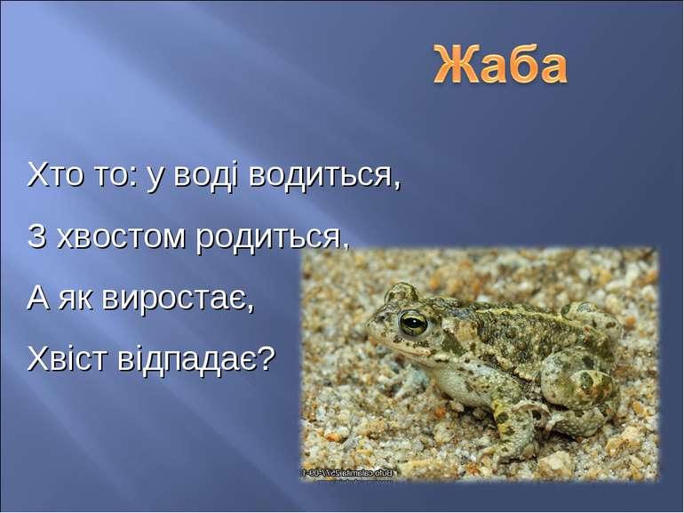 Хто то: у воді водиться, З хвостом родиться, А як виростає, Хвіст відпадає?