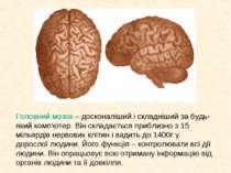 Головний мозок – досконаліший і складніший за будь-який комп'ютер. Він склада...