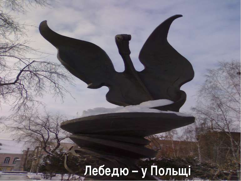 Лебедю – у Польщі
