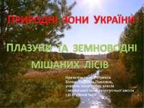 Презентацію підготувала Білаш Людмила Павлівна, учитель початкових класів Смі...