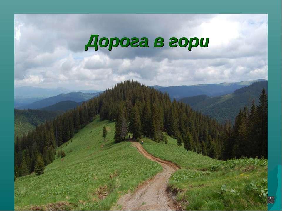 Дорога в гори