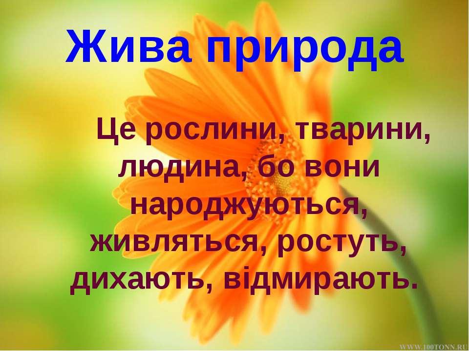 Жива природа Це рослини, тварини, людина, бо вони народжуються, живляться, ро...