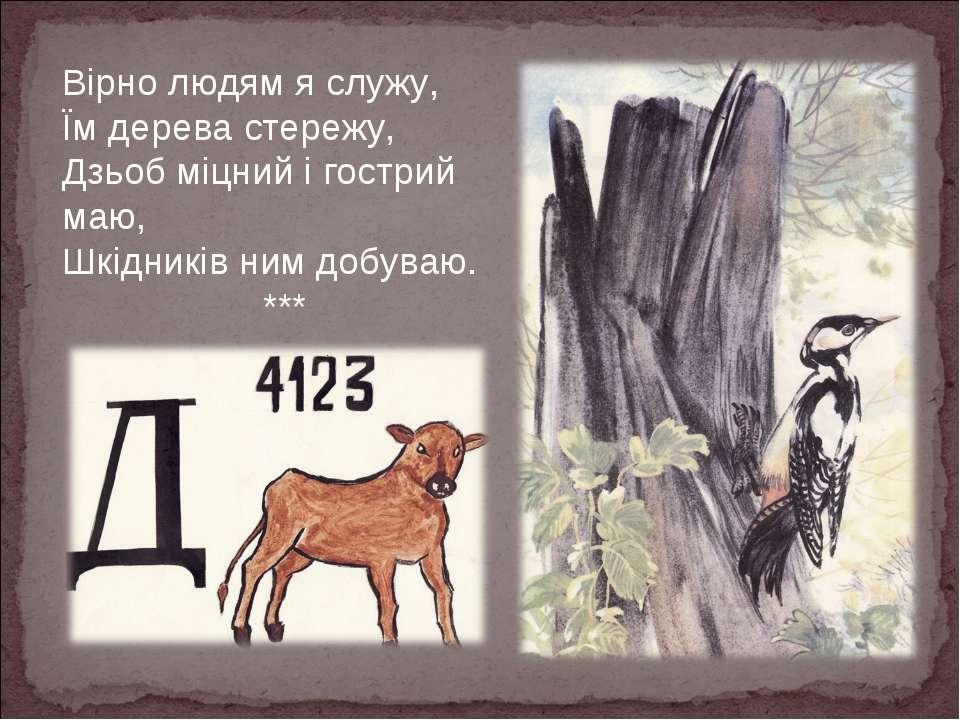 Вірно людям я служу, Їм дерева стережу, Дзьоб міцний і гострий маю, Шкідників...