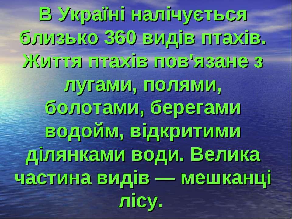 В Україні налічується близько 360 видів птахів. Життя птахів пов'язане з луга...