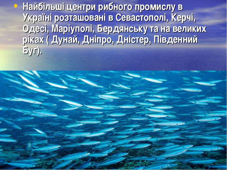 Найбільші центри рибного промислу в Україні розташовані в Севастополі, Керчі,...