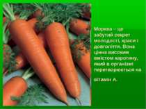 Морква – це забутий секрет молодості, краси і довголіття. Вона цінна високим ...
