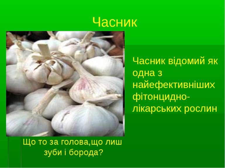 Часник Часник відомий як одна з найефективніших фітонцидно-лікарських рослин ...