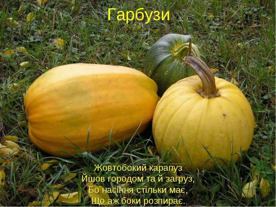 Жовтобокий карапуз Йшов городом та й загруз, Бо насіння стільки має, Що аж бо...